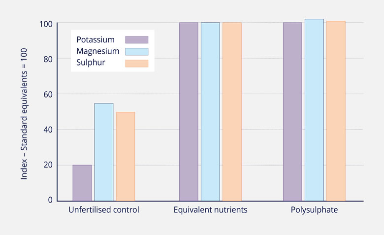 RELATIVE NUTRIENT UPTAKE FROM POLYSULPHATE COMPARED WITH EQUIVALENT STANDARD NUTRIENT SOURCES AND UNFERTILIZED CONTROL